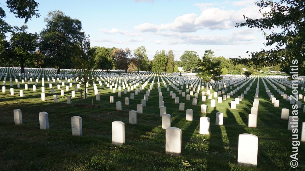 Arlingtono kapinės